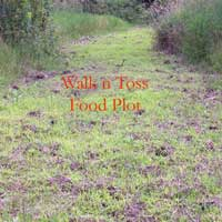 Walk-n-Toss-plot-july