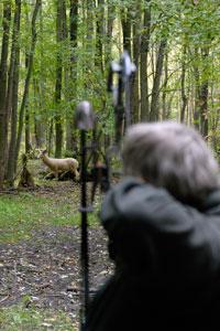 Peter Wood Rack Stacker Elite Team Member takes aim on a buck