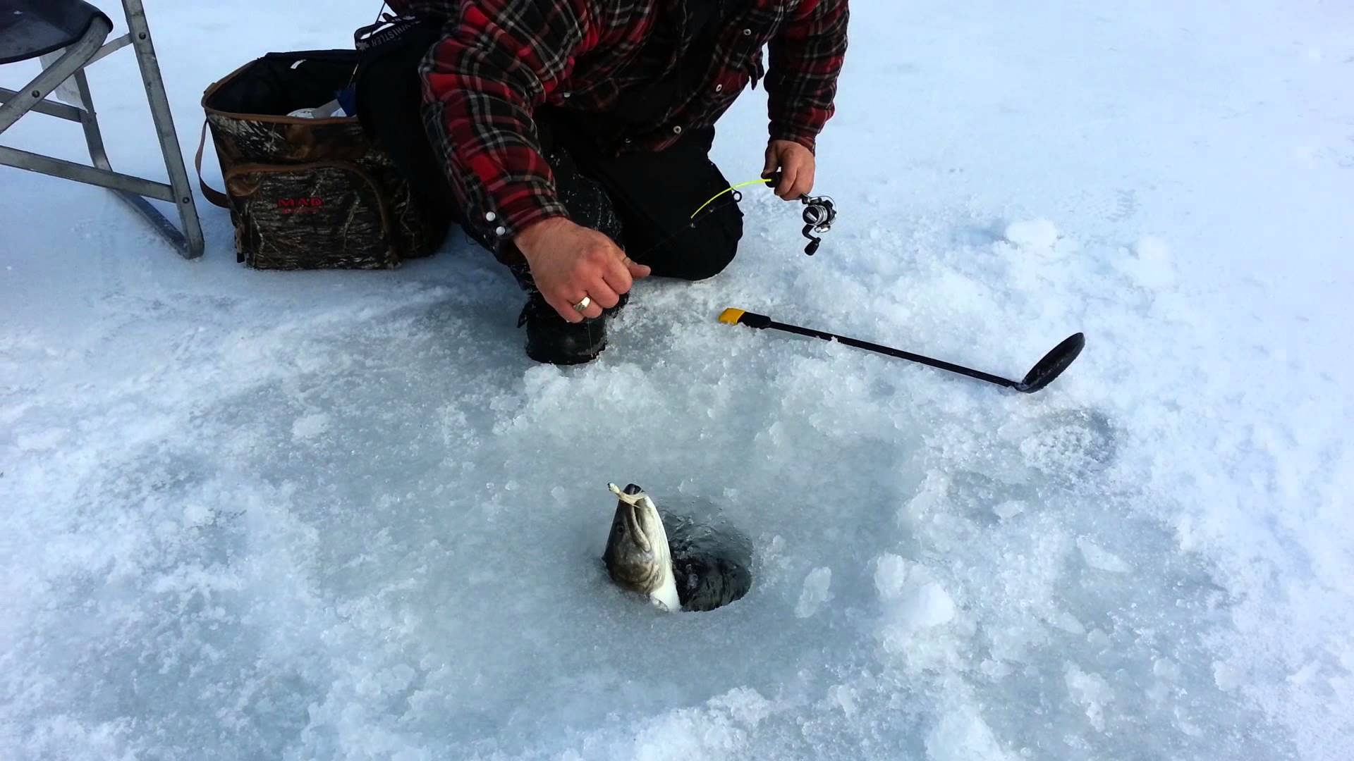 Ice fishing the ultimate guide podcast 240 expert ice for Mn ice fishing show