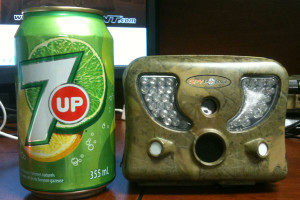 Use a quaility game trail camera that is easily hidden