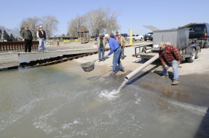Rainbow Trout Release