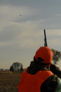 Proper Stance with Shotgun