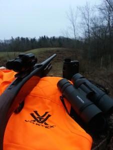 Browning BLR and Vortex Optics